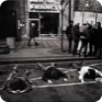 Arrested demonstrators lying on the ground of Wenceslas Square, 15 January 1989 (Source: Czech News Agency)